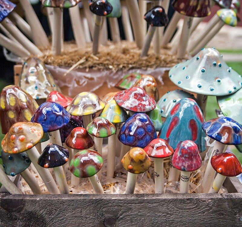 Mushroom Festival 2020.Telluride Mushroom Festival August 13 16 2020 Official Site