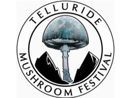 tmf-logo.png