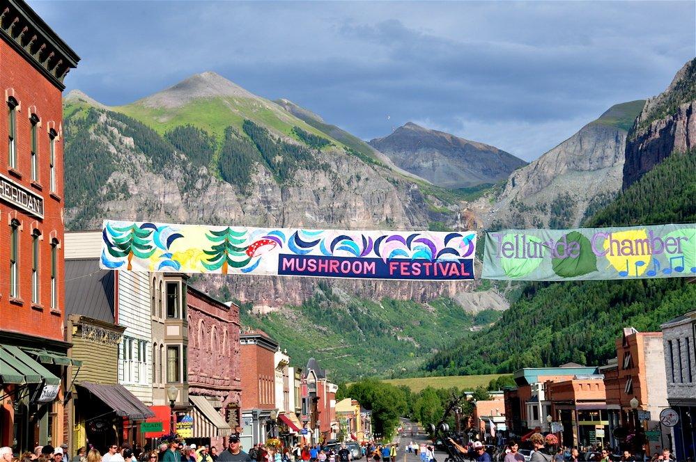 Mushroom Fest Updates & Highlights from Festival Director, Britt Bunyard