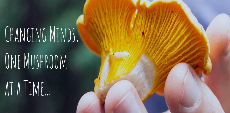 NEW All Access Mushroom Festival Pass